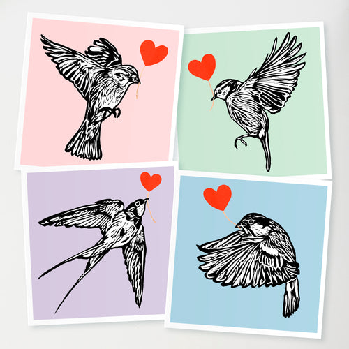 Feathered friends card collection