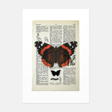 Load image into Gallery viewer, Red Admiral butterfly vintage book page art print
