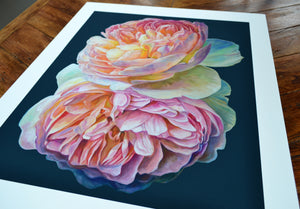 'Where flowers bloom' limited edition giclee print