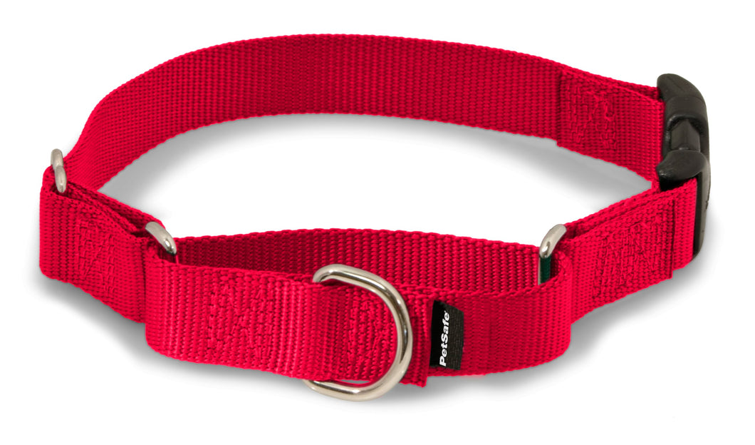 PetSafe Martingale Collar