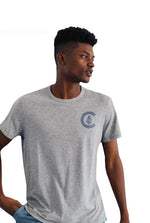 1914 LC MONUMENT CHICAGO CUBS TEE - Ivy Shop