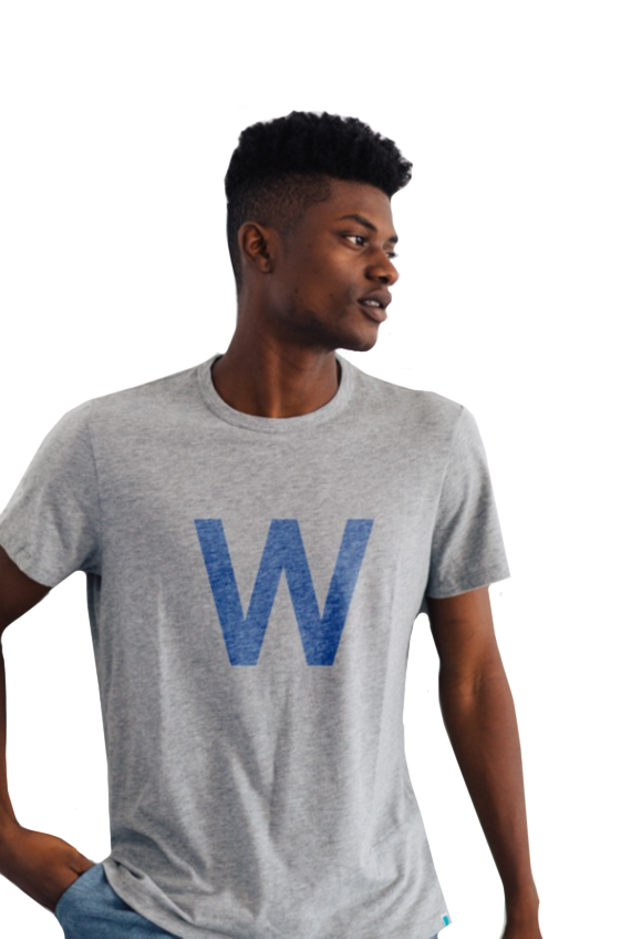 W FLAG MONUMENT CHICAGO CUBS TEE