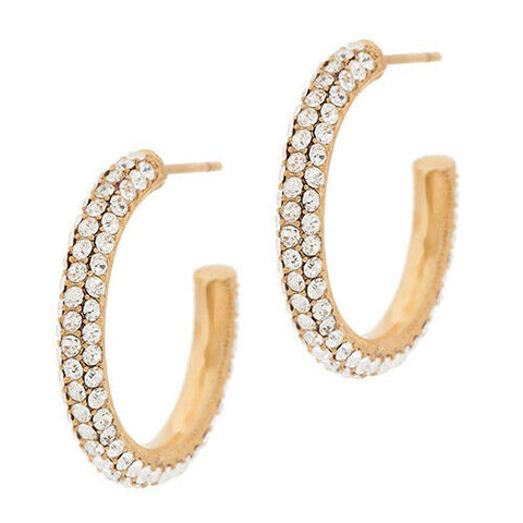 QVC Steel by Design Crystal Goldtone-Plated Stainless Steel Hoop Earrings