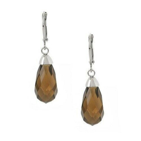 QVC Steel by Design Stainless Steel Brown Crystal Briolette Earrings