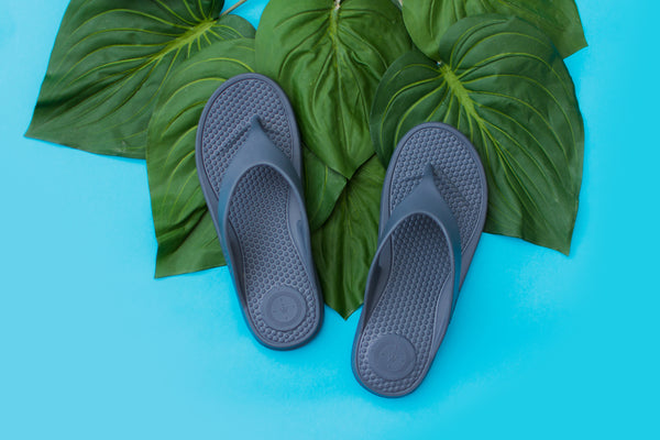 SolBounce Ara Thong Sandals on palm leaves