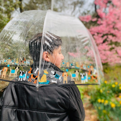 Little boy holding Signature Clear Bubble Umbrella backside view outside on sunny day