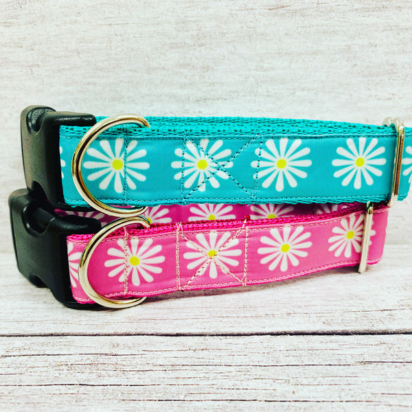 Single Daisy Print Dog Collar
