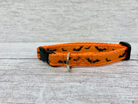 Bright colourful Bats Halloween Scary Puppy/Small Dog Collar