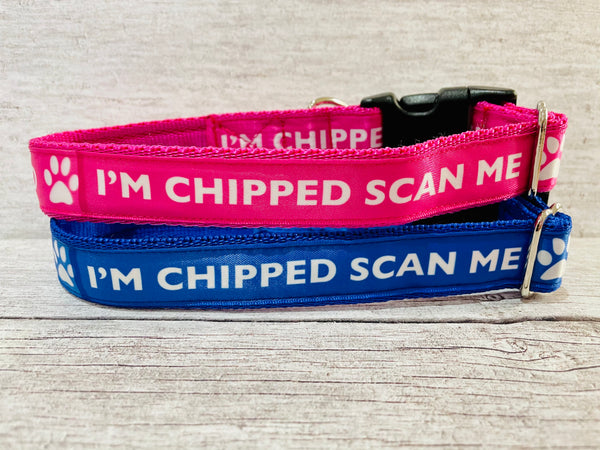 Chipped Scan Me Dog Collar
