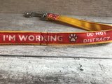 I'm Working Do Not Distract Dog Ribbon Lead/Leash - Custom Dog Collars