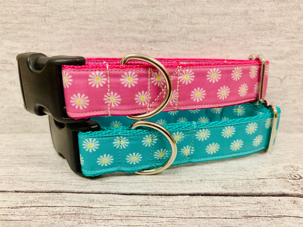 Multi Daisy Print Dog Collar