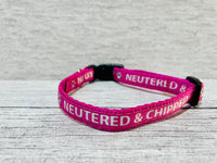 Microchipped - Allergies - Neutered - Spayed - Family - Owner - Vet Care - Feed Cat Kitten Collar
