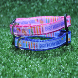 Birthday Cake Candles Puppy/Small Dog Collar - Custom Dog Collars