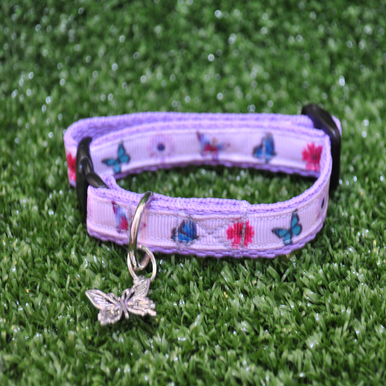 Butterfly and Flowers Kitten/Cat Collar - Custom Dog Collars