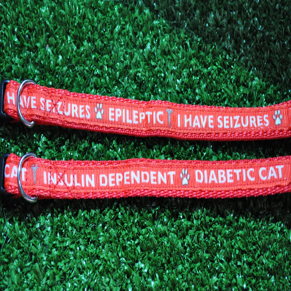 Epileptic Seizures - Diabetic Dog - Insulin Dependent - Medical Alert Puppy/Small Dog Collar - Custom Dog Collars