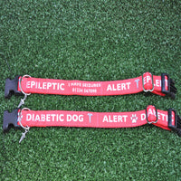 Epileptic - Medical Alert Dog Collar - Custom Dog Collars