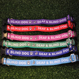 Deaf and Blind Dog Collar - Any Colour - Custom Dog Collars