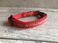 Marriage Wedding *Puppy Collar* Will you Marry Me? Collar *Proposal* - Custom Dog Collars