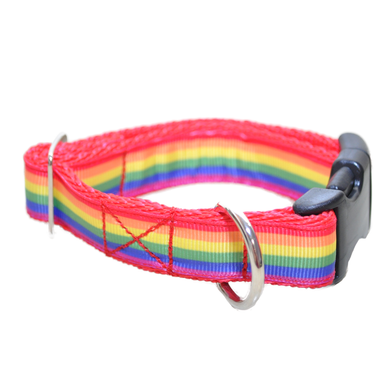 Colourful Rainbow Ribbon Dog Collar - Custom Dog Collars
