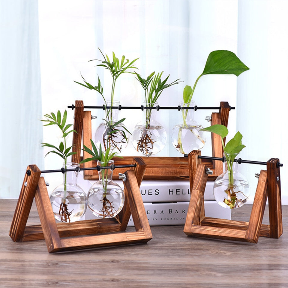 Moondream Hydroponic Plant Vases