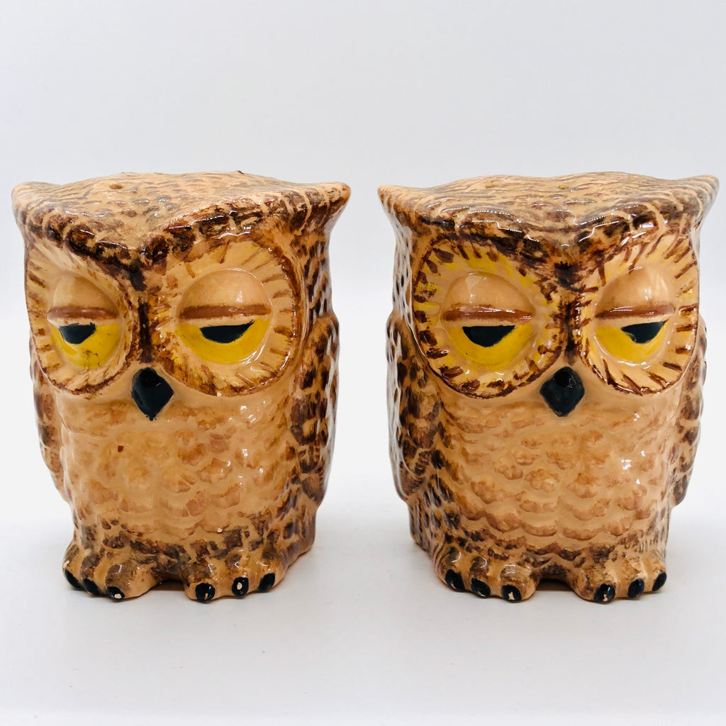 Ceramic Owls Vintage Salt & Pepper Shakers