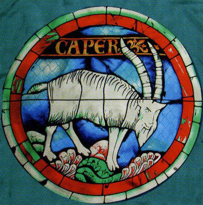100% Silk Stained Glass Scarf - Capricorn