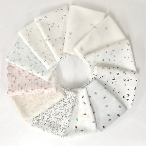 *NEW**BestSellers* Neutrals Bundle - 12pc FQ