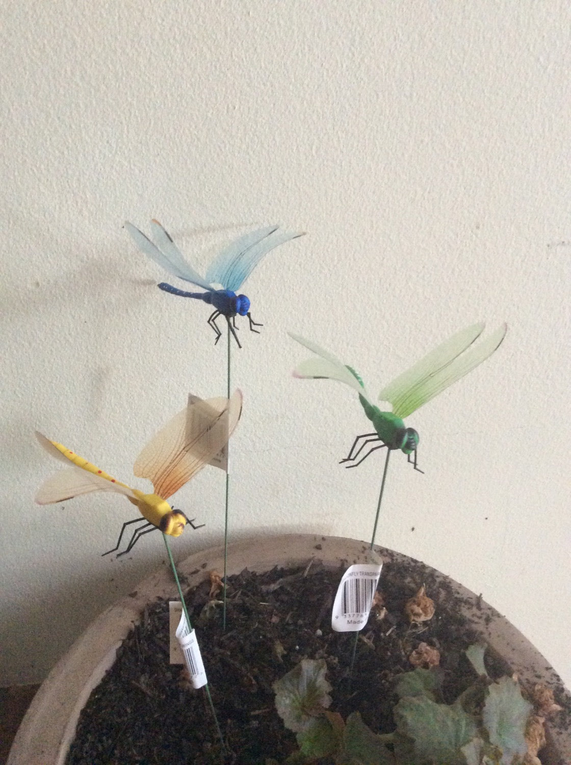 Garden Accessories - Dragonfly with  Transparent wings