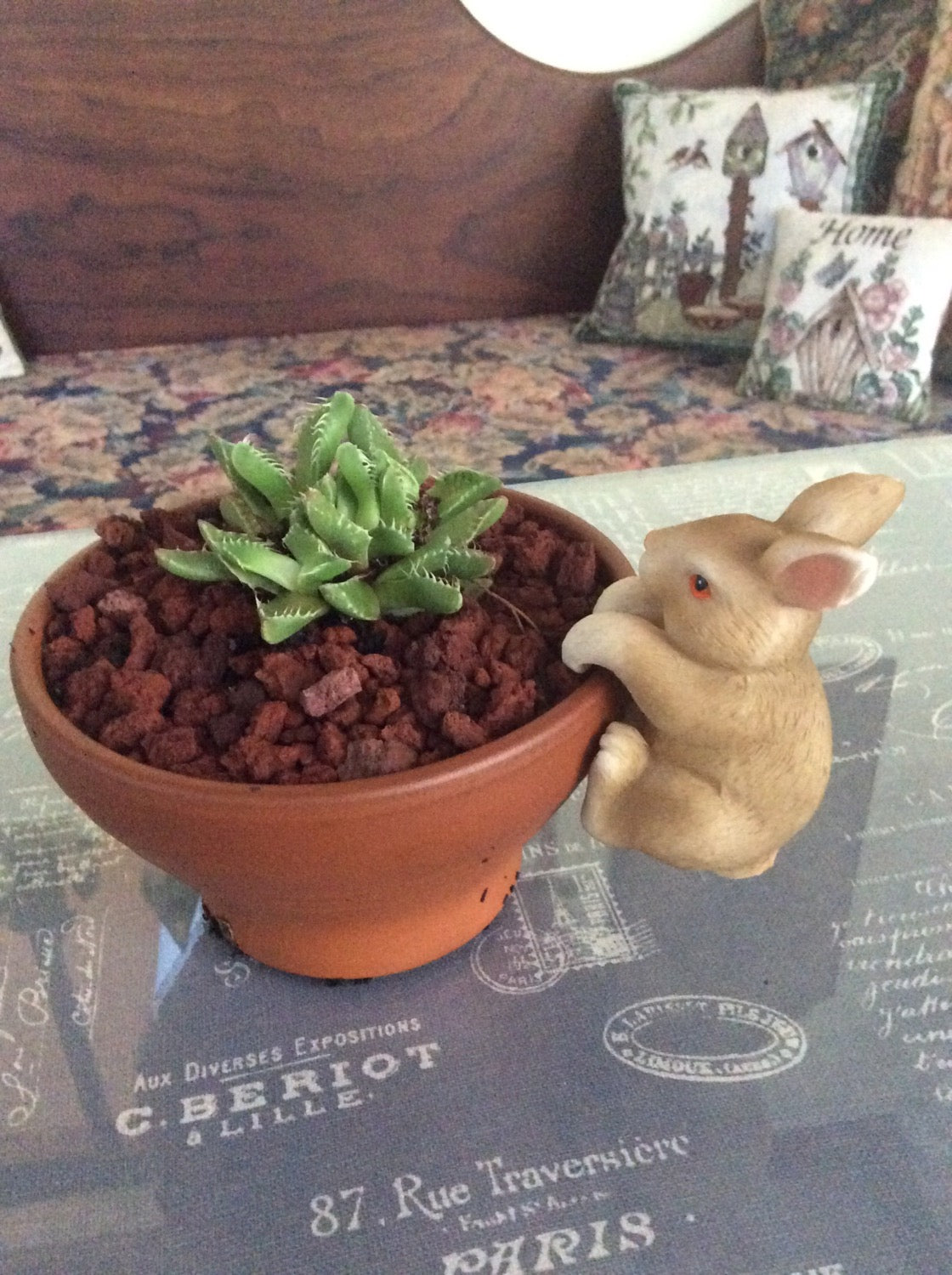 Garden Accessories - Bunny Pot Sitter
