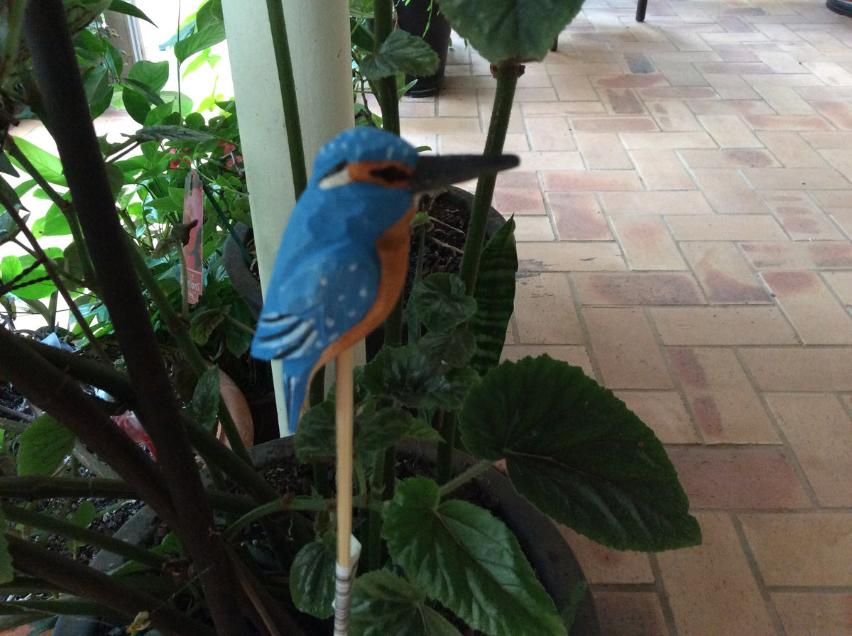 Timber Hand Carved Australian Birds - Kingfisher