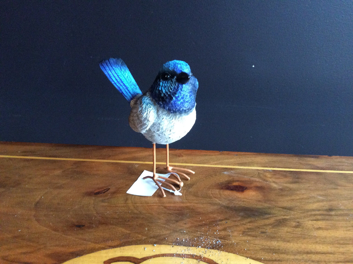 Large Fairy Wren with feet - Blue