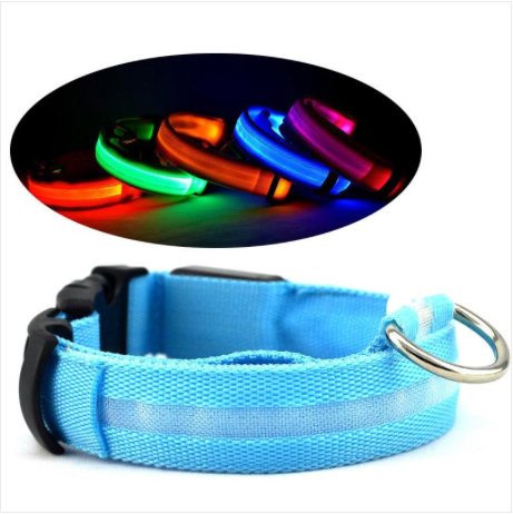 PET SAFETY COLLAR