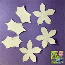Load image into Gallery viewer, Canvas Die Cuts Poinsettia Cut Shapes