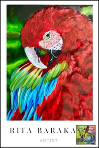 The Great Macaw original oil painting by Rita Barakat