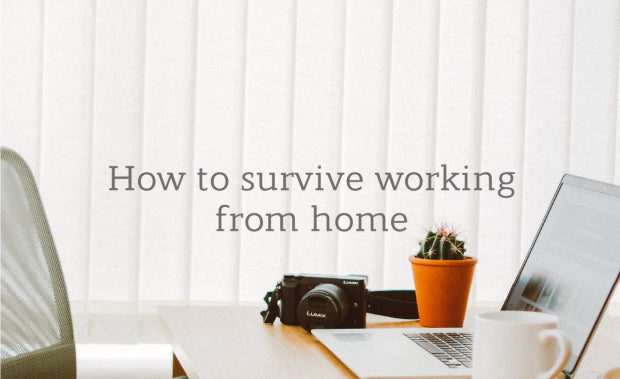 Life Indoors: How to survive working from home