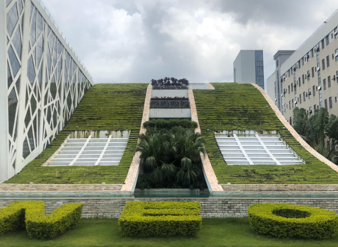 Close up of Neo-Concept's Zhongshan office building, showing a green sustainable wall