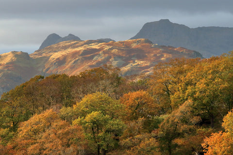 Langdale Valley in the Lake District