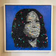 The Next President - Kamala Harris by Roger J. Carter