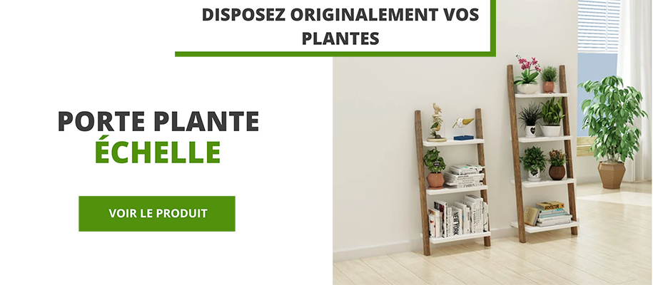 https://potsdefleursandco.com/products/meuble-echelle-plante