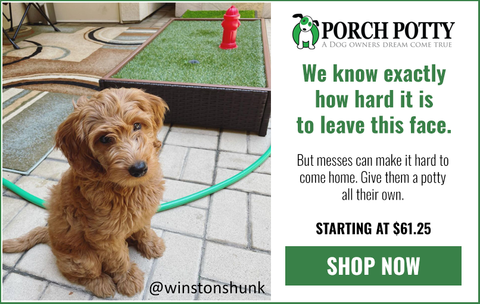 Help your dog cope with you gone with Porch Potty