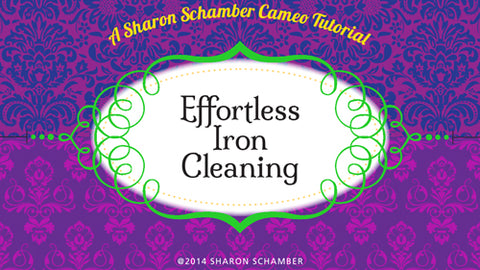 Sharon Schamber - Effortless Iron Cleaning