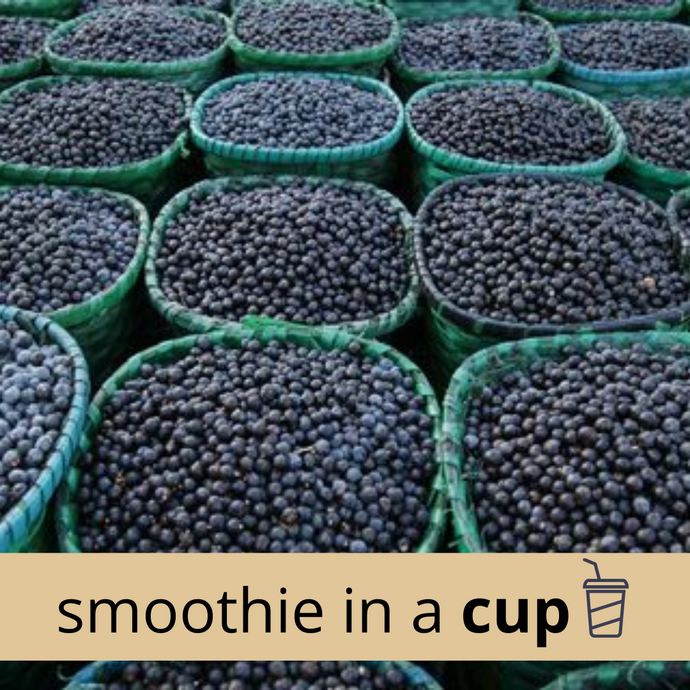Açaí Berry Classic Smoothie in a Cup