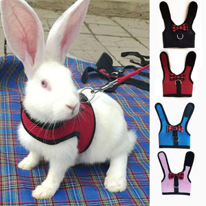 Rabbits Hamster Vest Harness With Leas Bunny  Mesh Chest Strap Harnesses Ferret Guinea Pig Small Animals - petsprive.com