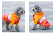 Load image into Gallery viewer, Autumn Winter Pet Clothes For Dogs Small Medium Big Dog Down Jacket Pets Clothing - petsprive.com