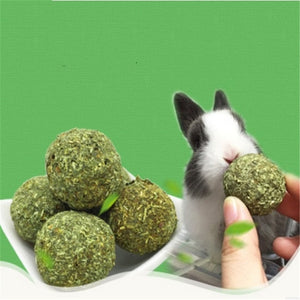 2pcs Hamster Chew Grass Ball String for Teeth Cleaning Hanging Molar Toy for Parrot Hamster Chinchilla Rabbit Guinea - petsprive.com