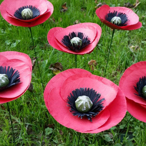 Red Paper Poppies