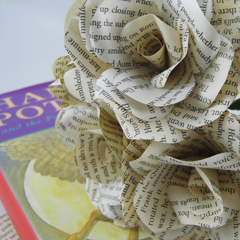 6 x Harry Potter Paper Roses