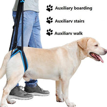 Load image into Gallery viewer, Adjustable Dog Lift Harness