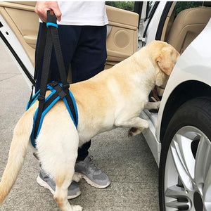 Adjustable Dog Lift Harness