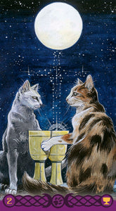 Tarot of Pagan Cats